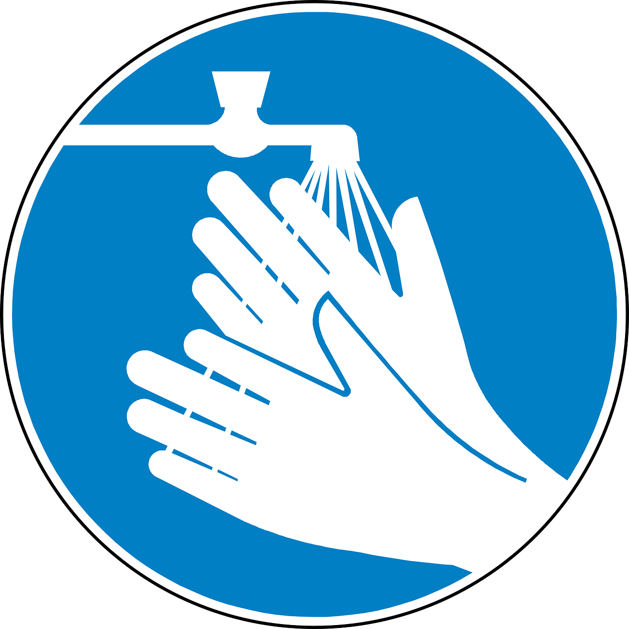 Have You Washed Your Hands Microbe Post